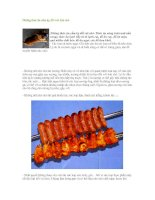 Tài liệu Những thức ăn cấm kỵ đối với loài chó pptx