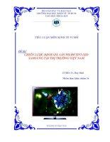 Chiến lược định giá sản phẩm TIVI LED sam sung tại thị trường việt nam