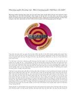 Tài liệu Nhượng quyền thương mại - Nhà nhượng quyền Việt Nam cần biết pptx
