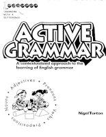 Tài liệu Active grammar 1 part 1 pdf