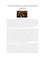 Tài liệu Nuôi ong trong vườn cây ăn trái - Mô hình cần nhân rộng docx