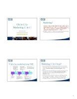 Tài liệu Chiến lược Marketing điện tử ppt
