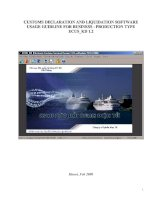 Tài liệu CUSTOMS DECLARATION AND LIQUIDATION SOFTWARCUSTOMS DECLARATION AND LIQUIDATION SOFTWARE USAGE GUIDLINE FOR BUSINESS - PRODUCTION TYPE ECUS_KD 1.2 docx