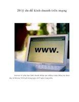 Tài liệu 20 lý do để kinh doanh trên mạng ppt