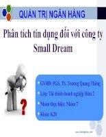 Slide phân tích tín dụng công ty small dream