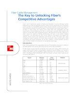 Tài liệu ADC KRONE - Guide - FO - The Key to Unlocking Fiber competitive advantages doc