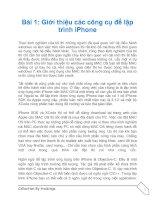 Tài liệu Thủ thuật lập trình cho iPhone part 1 pdf