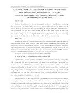 Tài liệu Nghiên cứu phản ứng chuyển hóa Este mỡ docx