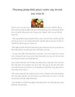 Tài liệu Phương pháp khôi phục vườn cây ăn trái sau mùa lũ pptx