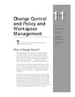 Tài liệu Change Control and Policy and Workpace Management Chapter11 pptx