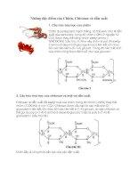 Tài liệu Những đặc điểm của Chitin, Chitosan và dẫn xuất pdf