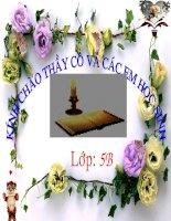 Gián án Ôn tập dâu câu(tiết 2)