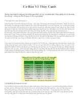 Cơ bản về trồng cây bằng phương pháp thủy canh
