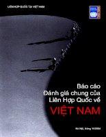 Tài liệu Báo cáo đánh giá chung của Liên hiệp quốc về Việt Nam docx
