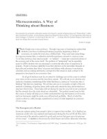 CHAPTER 1 Microeconomics, A Way of Thinking about Business
