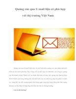 Tài liệu Quảng cáo qua E-mail liệu có phù hợp với thị trường Việt Nam pptx