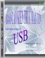 Tài liệu Báo cáo kiến trúc máy tính: Giới thiệu sơ lược về USB doc