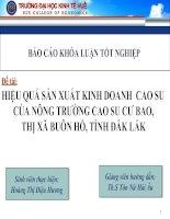 Slide HIỆU QUẢ sản XUẤT KINH DOANH  CAO SU của NÔNG TRƯỜNG CAO SU cư BAO,THỊ xã BUÔN hồ, TỈNH đắk lắk