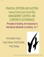 Tài liệu FINANCIAL SYSTEMS AND AUDITING ppt