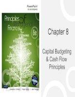 Chapter 8   capital, budgetting & cash flow principles