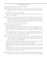 Bài soạn bai tập hay về Fe