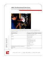Tài liệu ADC Professional Services Commissioning and Integration Experience ppt
