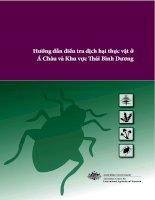 Tài liệu Hướng dẫn điều tra dịch hại thực vật ở Á Châu và Khu vực ái Bình Dương pdf