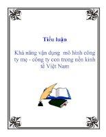 Tài liệu Tiểu luận: Khả năng vận dụng mô hình công ty mẹ - công ty con trong nền kinh tế Việt Nam ppt