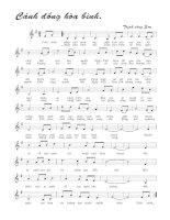 Tài liệu Bài hát cánh đồng hòa bình - Trịnh Công Sơn (lời bài hát có nốt) docx