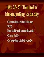Gián án bai 25 - 27 sinh hoc 8
