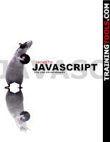Tài liệu Intro to Javascrip pptx