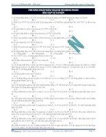 bài tập phương pháp đếm nhanh số đồng phân