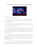 Tài liệu Nền móng vững chắc cho ngôi nhà kinh doanh (Phần 1) Phần 1: Giai đoạn thành lập pdf