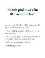 Tài liệu Thành phần và cấu tạo acid nuclêic pptx