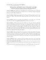 Bài giảng Đề giao lưu toán tuổi thơ năm 2008