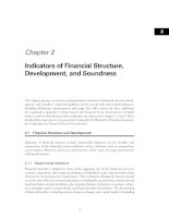 Tài liệu Chapter 2: Indicators of Financial Structure, Development, and Soundness ppt