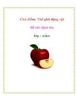 Tài liệu Chủ điểm: Thế giới động vật - Đề tài: Quả táo - Lớp : Mầm ppt