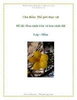 Tài liệu Chủ điểm: Thế giới thực vật - Đề tài: Hoa cánh tròn và hoa cánh dài - Lớp : Mầm pdf