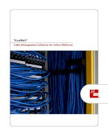 Tài liệu Cable Management Solutions for Active Platforms docx