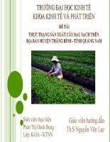 Slide THỰC TRẠNG sản XUẤT cây RAU SẠCH TRÊN địa bàn HUYỆN THĂNG BÌNH   TỈNH QUẢNG NAM
