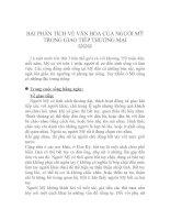 Tài liệu BÀI PHÂN TÍCH VỀ VĂN HÓA CỦA NGƯỜI MỸ TRONG GIAO TIẾP THƯƠNG MẠI ppt