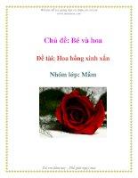Tài liệu Chủ đề: Bé và hoa - Đề tài: Hoa hồng xinh xắn - Nhóm lớp: Mầm pptx