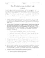 Tài liệu The Marketing Leadership Audit pdf
