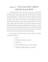 Tài liệu Tổng quan về chuyển mạch mềm và giải pháp của ALCATEL, chương 12 docx