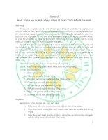 Tài liệu Giáo trình sinh thái học đồng ruộng - Chương 2 ppt
