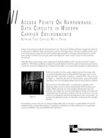 Tài liệu ACCESS POINTS ON NARROWBAND DATA CIRCUITS IN MODERN docx