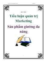Tài liệu Tiểu luận quản trị Marketing: Sản phẩm giường đa năng pptx