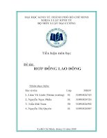 Tài liệu Tiểu luận hợp đồng lao động (pháp luật đại cương) pdf