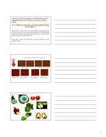 VẬT lý THỰC PHẨM   CHƯƠNG 3 -Phương pháp và thiết bị thường sửdụng để kiểm tra các thông số vật lý của thực phẩm