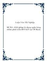 """Tài liệu Đề tài """"Giải pháp tín dụng ngân hàng nhằm phát triển DNV&N tại VP Bank"""" docx"""